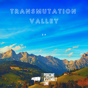 Transmutation Valley 300